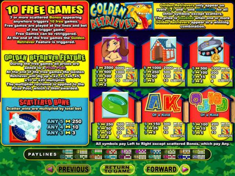 Golden Retriever RTG Progressive Jackpot Slot